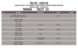 GIVI - GIVI TB2120 YAMAHA TRICITY 125-155 (14-18) SISSYBAR (1)
